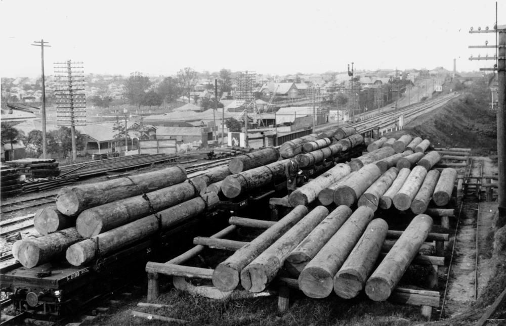 StateLibQld_1_132721_Timber_bound_for_D._G._Brims'_sawmill,_Milton,_Brisbane,_ca._1915